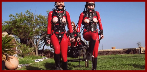 latex girls in form horses