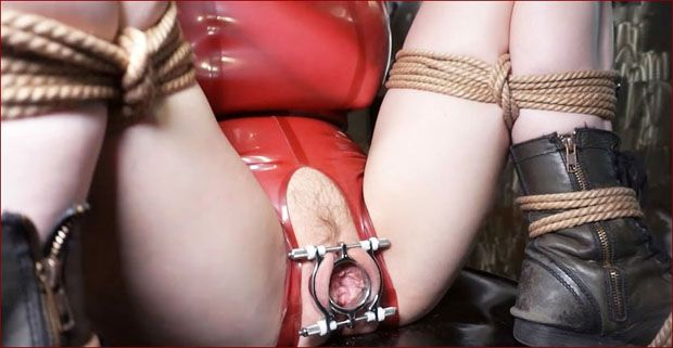 Elise Graves,Troy Orleans, Petgirl Kako - Porn bondage game with steel toys [HD 720p]