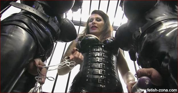 Miss Velour - Male bondage and torture dick in cage [HD 720p]